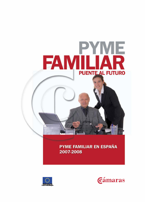 Pyme familiar Puente al Futuro. Pyme familiar en España 2007-2008